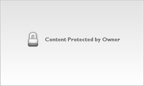 Common Tern August 2014